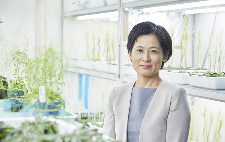 Keiko Sugimoto